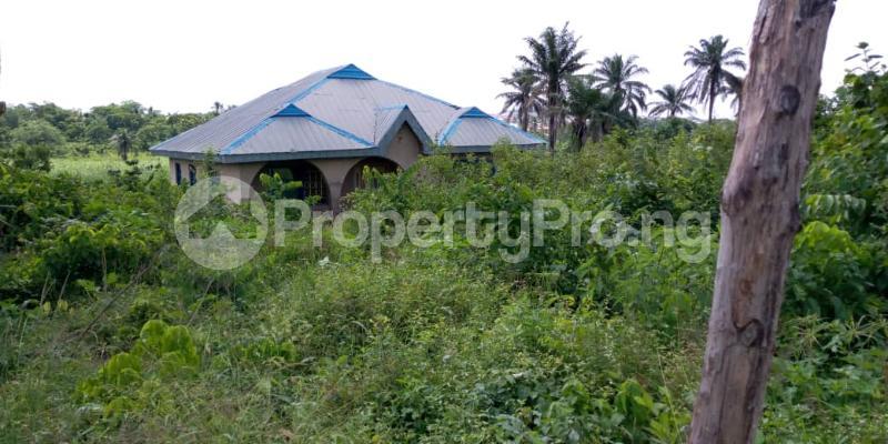 5 bedroom Flat / Apartment for sale  onikankan area moniya ibadan Akinyele Oyo - 3
