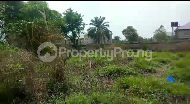 Mixed   Use Land Land for sale Book Foundation Ifite Awka  Awka South Anambra - 1