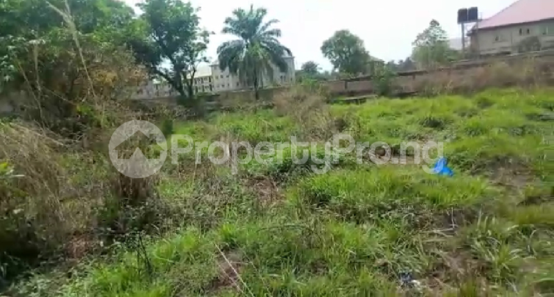 Mixed   Use Land Land for sale Book Foundation Ifite Awka  Awka South Anambra - 2