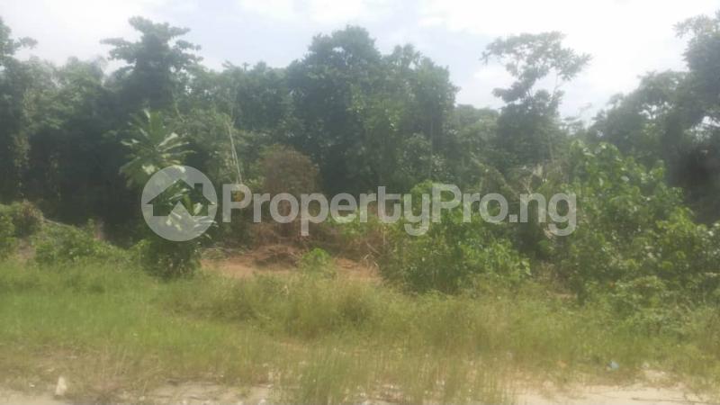 Land for sale Beside Lufasi Park Abijo Ajah Lagos - 0