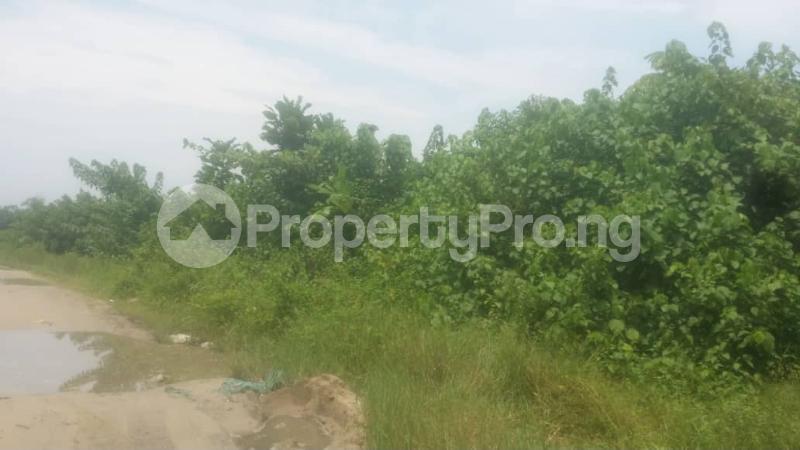 Land for sale Beside Lufasi Park Abijo Ajah Lagos - 2
