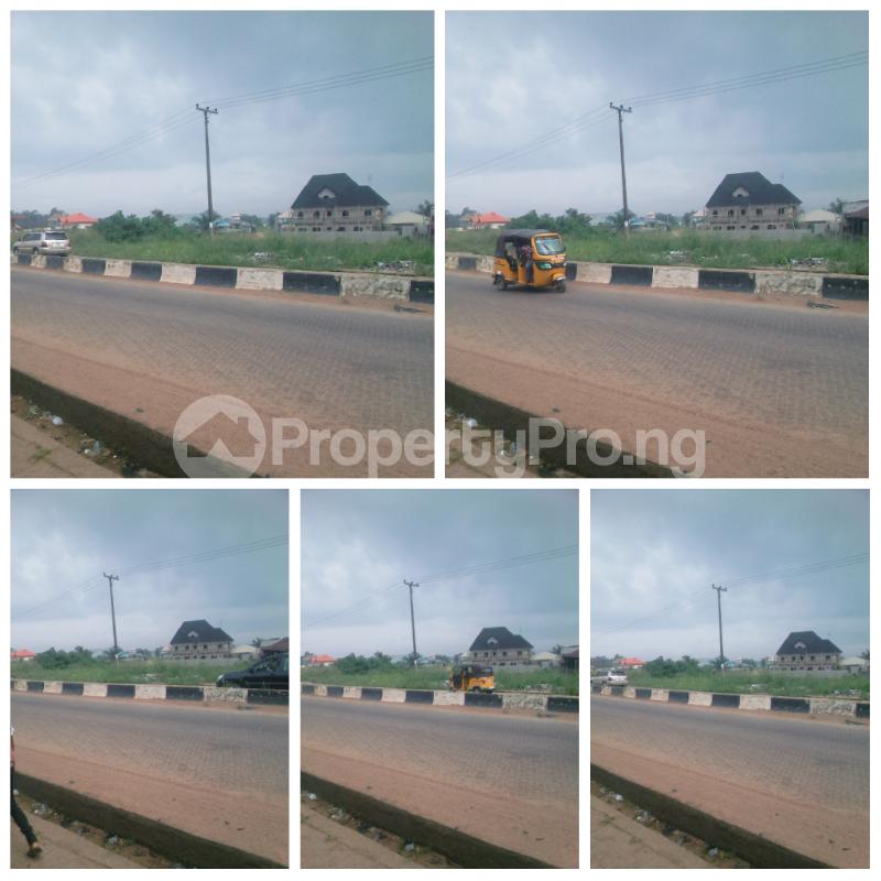 Mixed   Use Land Land for sale Iyanera - Iyanosash. Agbara - Alaba Axis Okokomaiko Ojo Lagos - 1