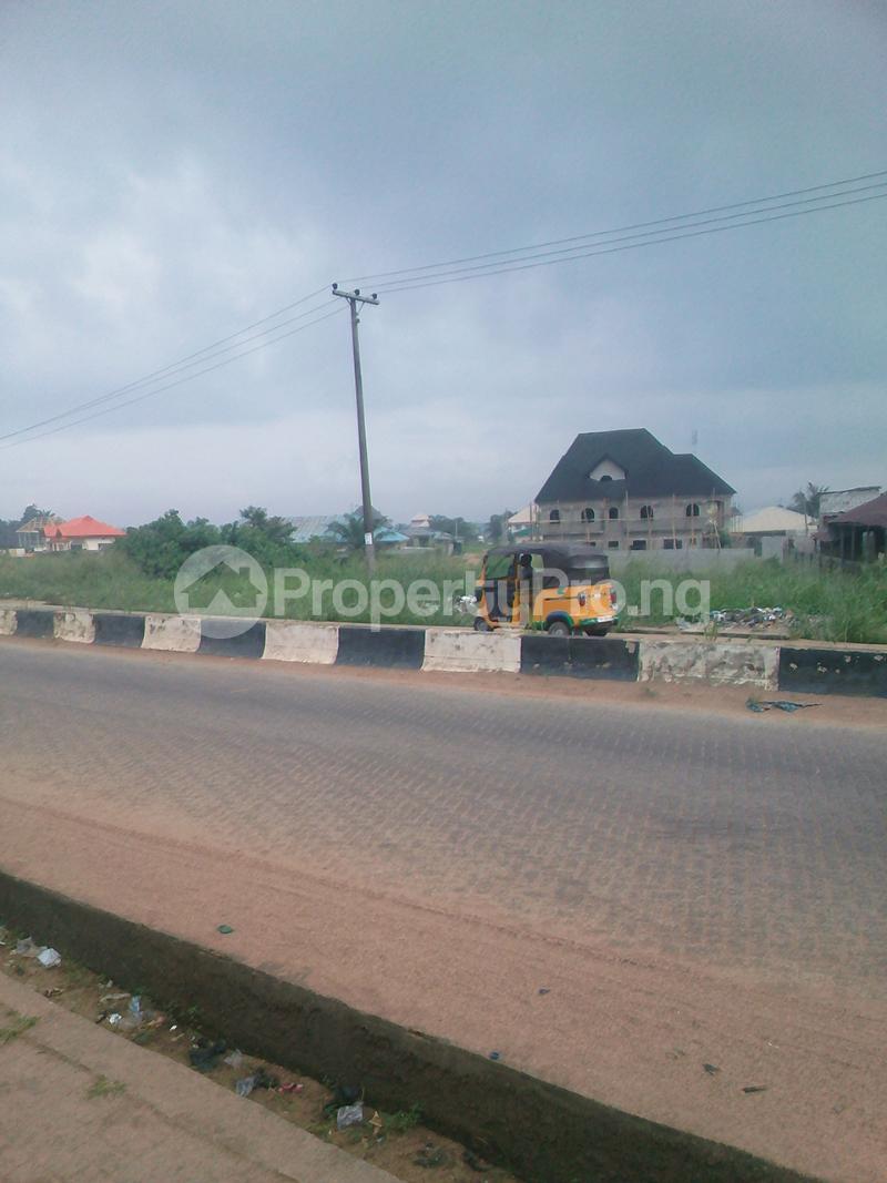 Mixed   Use Land Land for sale Iyanera - Iyanosash. Agbara - Alaba Axis Okokomaiko Ojo Lagos - 3