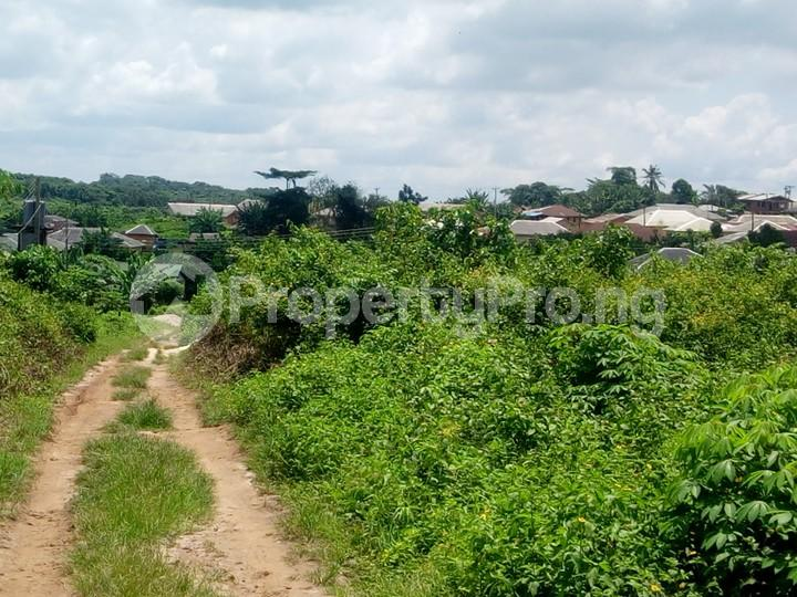 Land for sale Asungboro village off Iseyin Abeokuta  Expressway, Iseyin LG, Oyo state, 30 minutes  Drive from the road Iseyin Oyo - 1