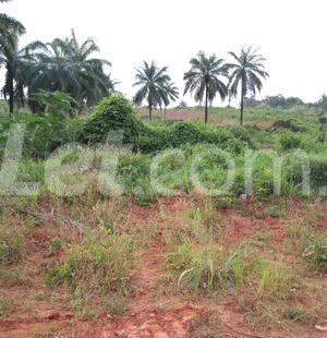 Residential Land Land for sale Nkwelle, Anambra Oyi Anambra - 4