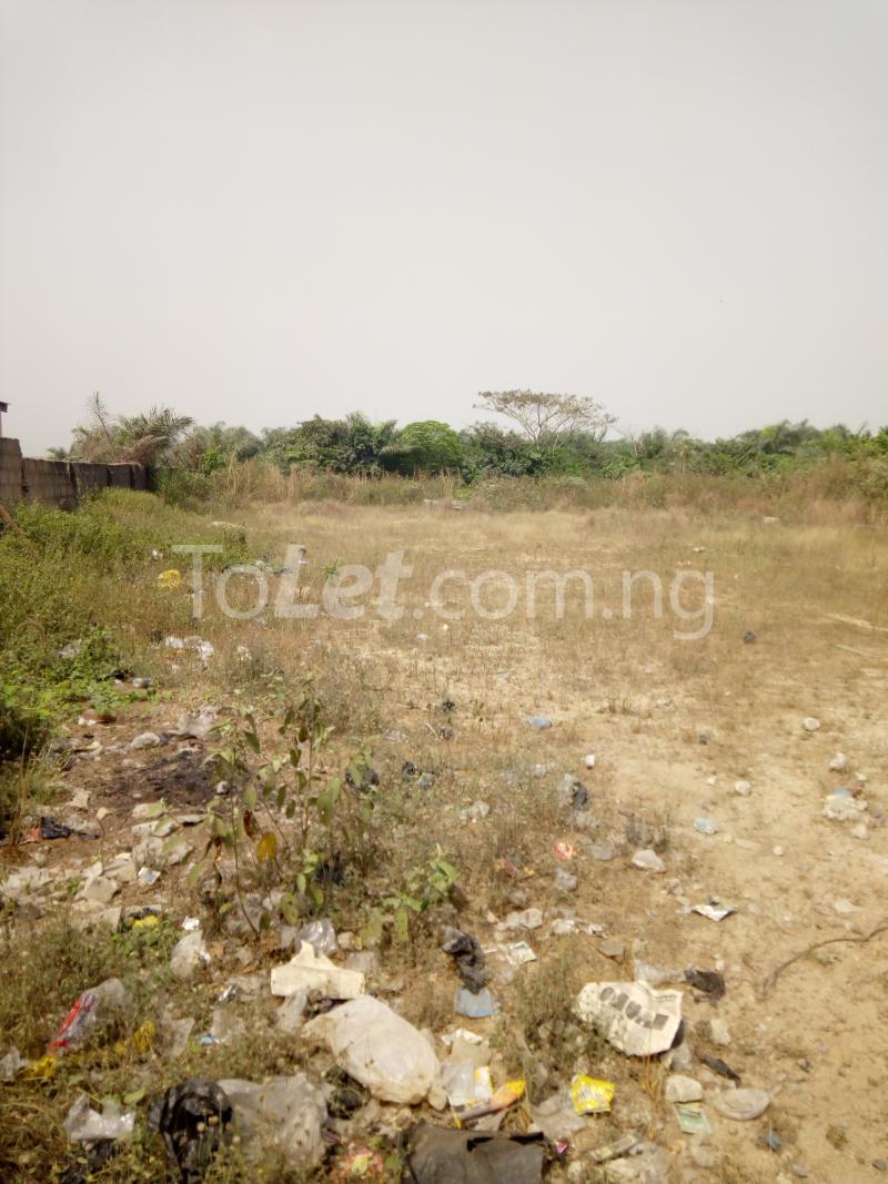 Land for rent Kajola  Ibeju-Lekki Lagos - 0