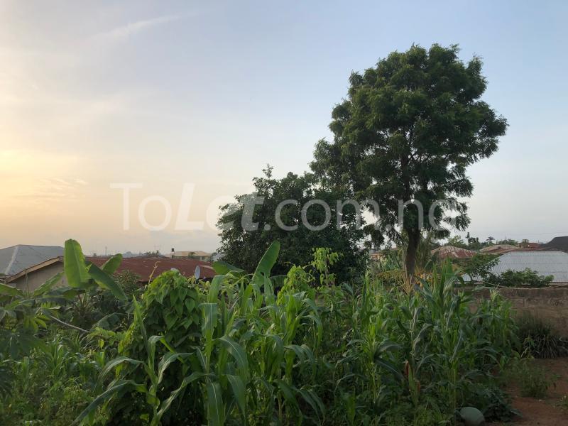 Land for sale Akure - Iju road Akure Ondo - 1