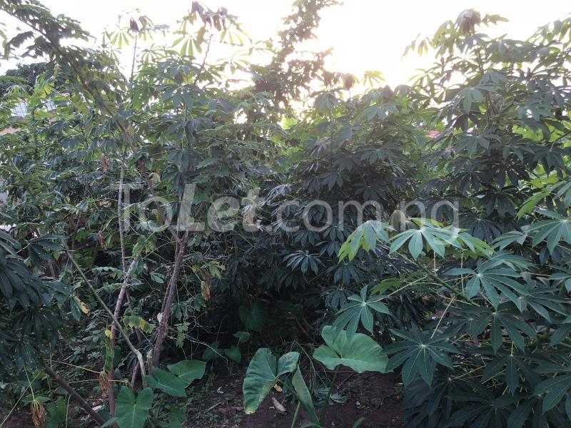 Land for sale Akure - Iju road Akure Ondo - 0