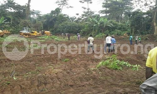 Land for sale Along Iseyin okeho road just 8 minutes  Drive from first Bank Iseyin branch and another 3 minutes drive from the expressway  Iseyin Oyo - 0