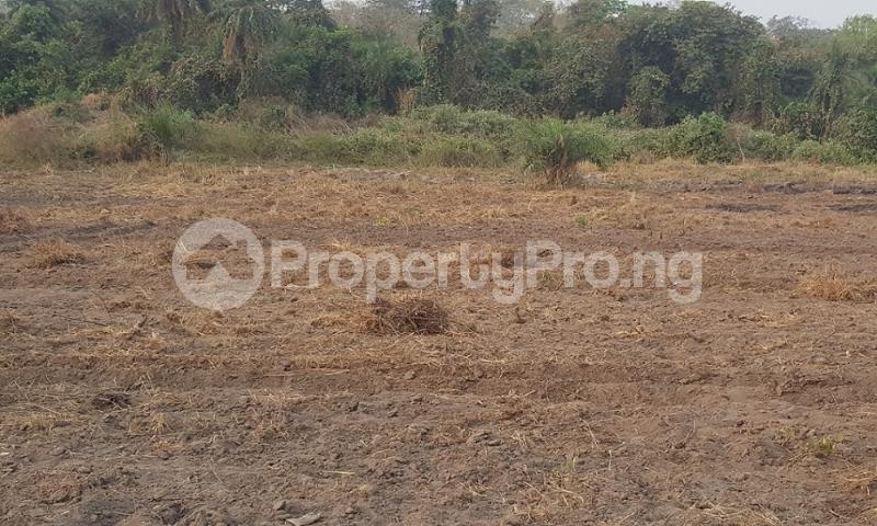 Land for sale Along Iseyin okeho road just 8 minutes  Drive from first Bank Iseyin branch and another 3 minutes drive from the expressway  Iseyin Oyo - 1
