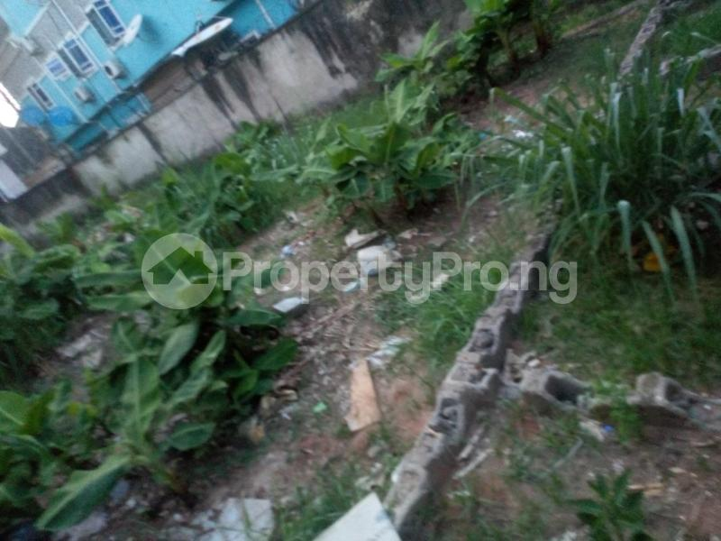 Residential Land Land for sale Lily Estate, Amuwo Odofin Amuwo Odofin Amuwo Odofin Lagos - 0