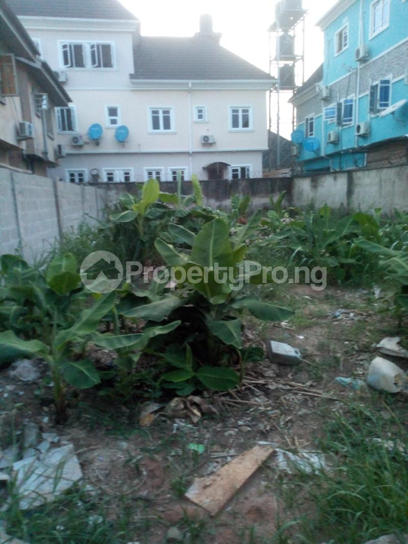 Residential Land Land for sale Lily Estate, Amuwo Odofin Amuwo Odofin Amuwo Odofin Lagos - 1