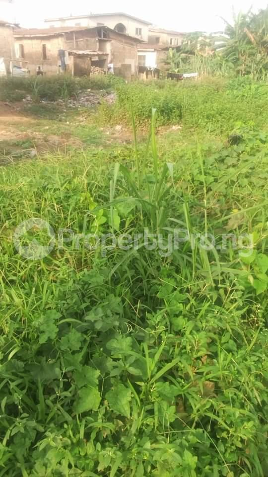 Residential Land Land for sale Off arobaba str idimu Idimu Egbe/Idimu Lagos - 0