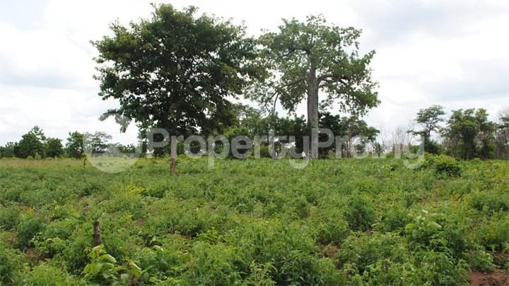 Land for sale Ipapo town itesiwaju LG, Oyo state Just 15 minutes drive from the expressway Iseyin Oyo - 0
