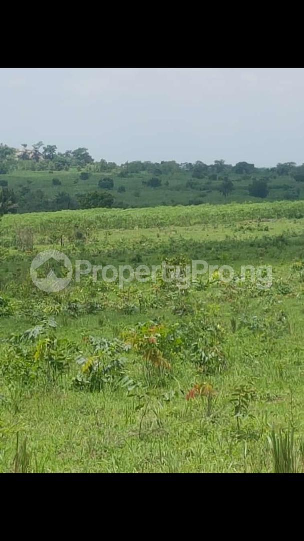 Commercial Land Land for sale Iseyin, Oyo state Iseyin Oyo - 0