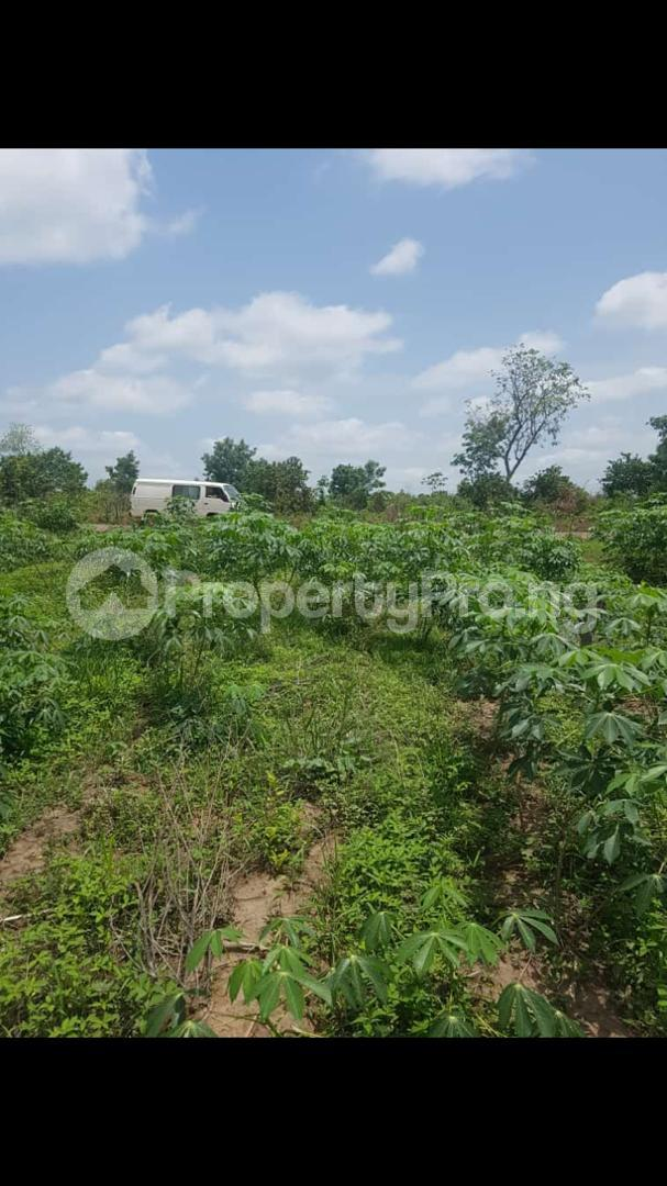 Commercial Land Land for sale Iseyin, Oyo state Iseyin Oyo - 1