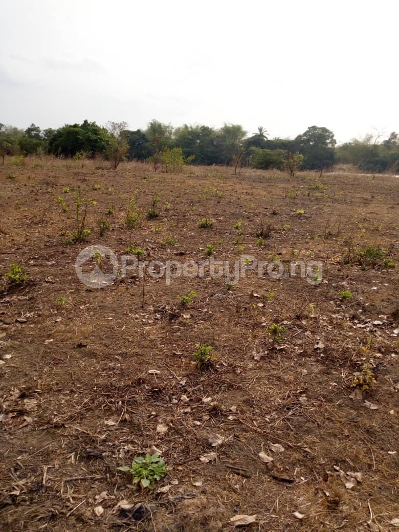 Mixed   Use Land Land for sale at Omasi Agu,  Ayamelum Anambra - 0