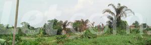 Mixed   Use Land Land for sale Ise/Orun Ise/Orun Ekiti - 10
