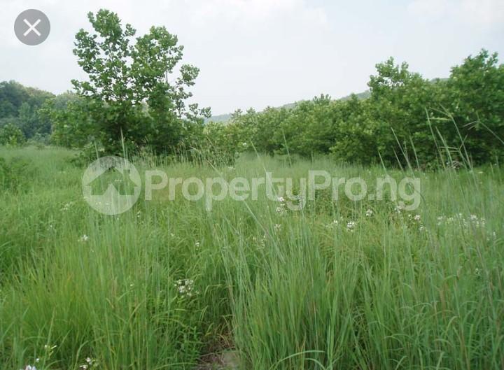 Land for sale Lasu - Iba Isheri Olofin Road Iba Ojo Lagos - 0