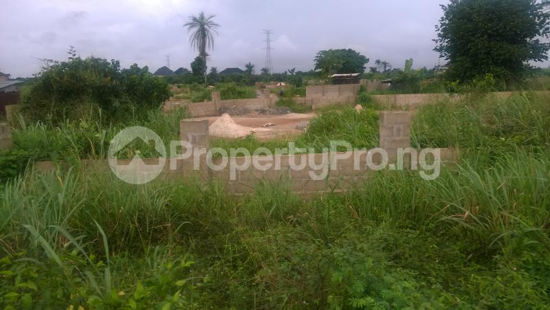 Land for sale Orji Town Layout Annex, Around IBC Quarters Orji Owerri Imo - 5