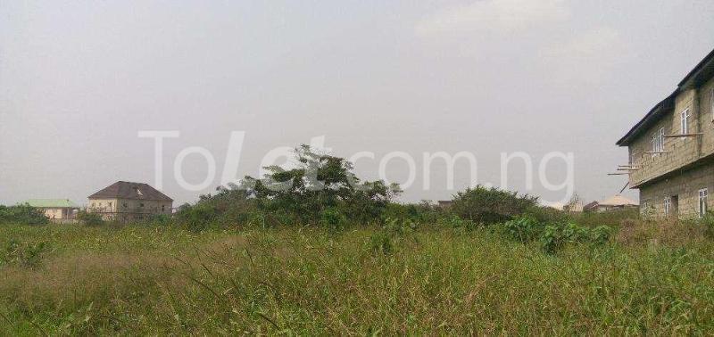 Land for sale Shomolu, Lagos Shomolu Lagos - 1