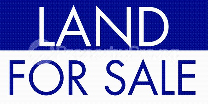 Commercial Land Land for sale Along Sapele road Opposite satanna market  Oredo Edo - 0