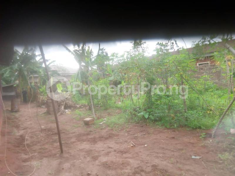 8 bedroom Detached Bungalow House for sale Close to teachers house, Ogida barrack, siloku road Egor Edo - 3
