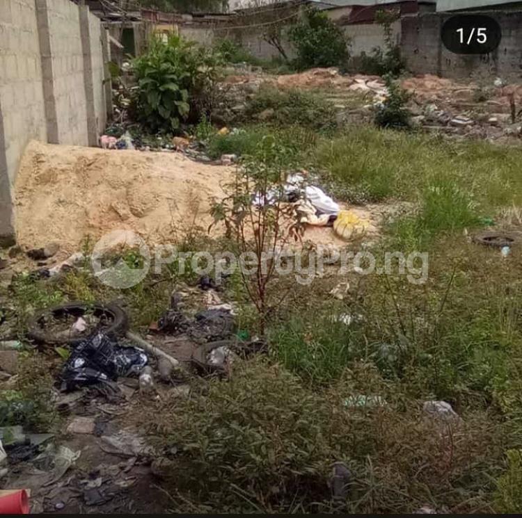 Land for sale Pedro road  Palmgroove Shomolu Lagos - 1