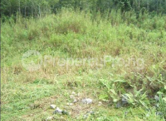 Mixed   Use Land Land for sale Kabusa Abuja - 0