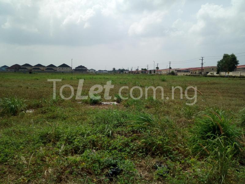 Land for sale Mayfair Gardens Estate Ibeju-Lekki Lagos - 2