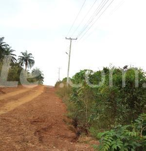 Residential Land Land for sale Nkwelle, Anambra Oyi Anambra - 8