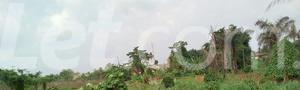Mixed   Use Land Land for sale Ise/Orun Ise/Orun Ekiti - 11