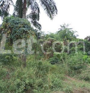 Residential Land Land for sale Nkwelle, Anambra Oyi Anambra - 6