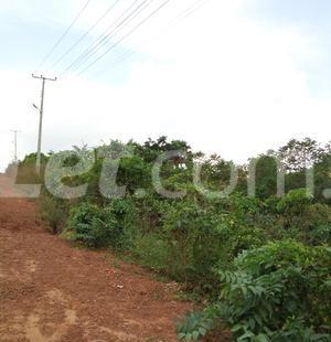 Residential Land Land for sale Nkwelle, Anambra Oyi Anambra - 2