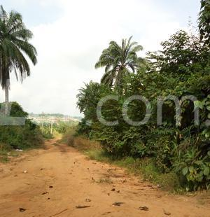 Residential Land Land for sale Nkwelle, Anambra Oyi Anambra - 9