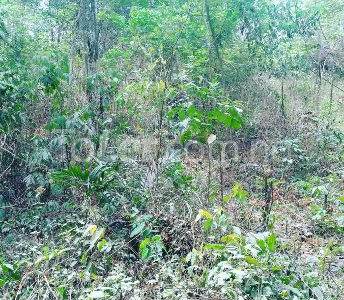 Land for sale Odogbolu, Ogun Odogbolu Ogun - 0