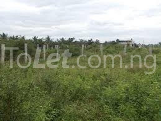 Land for sale UYO Uyo Akwa Ibom - 3