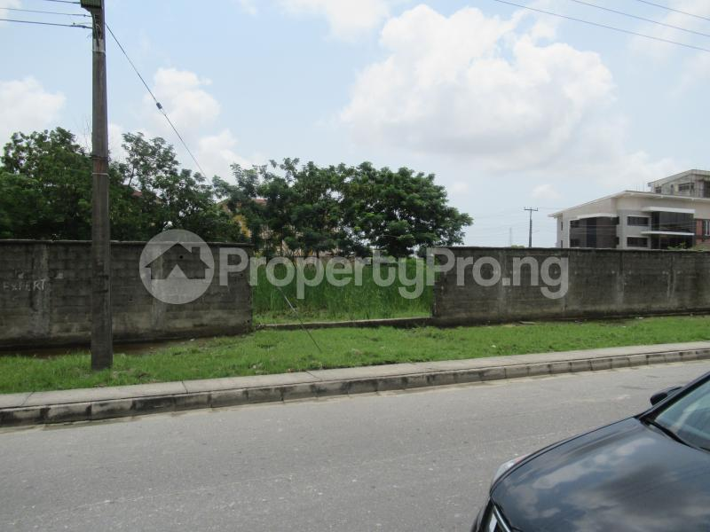 Land for sale Osborne Osborne Foreshore Estate Ikoyi Lagos - 2