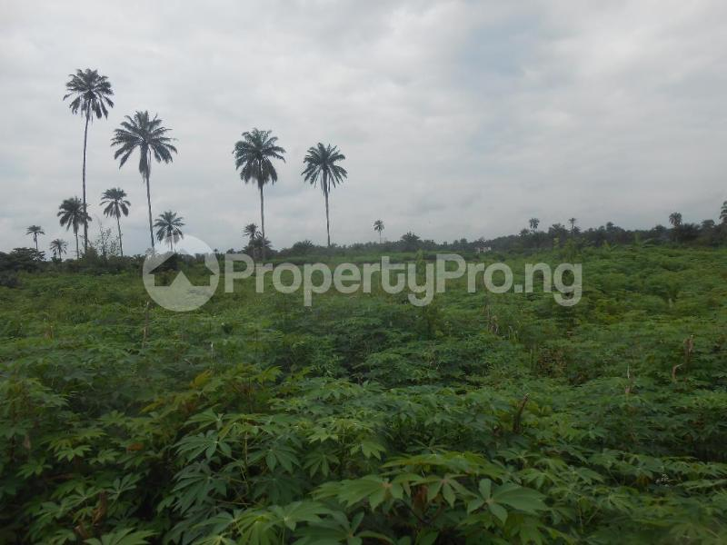 Residential Land Land for sale UYO Uyo Akwa Ibom - 1