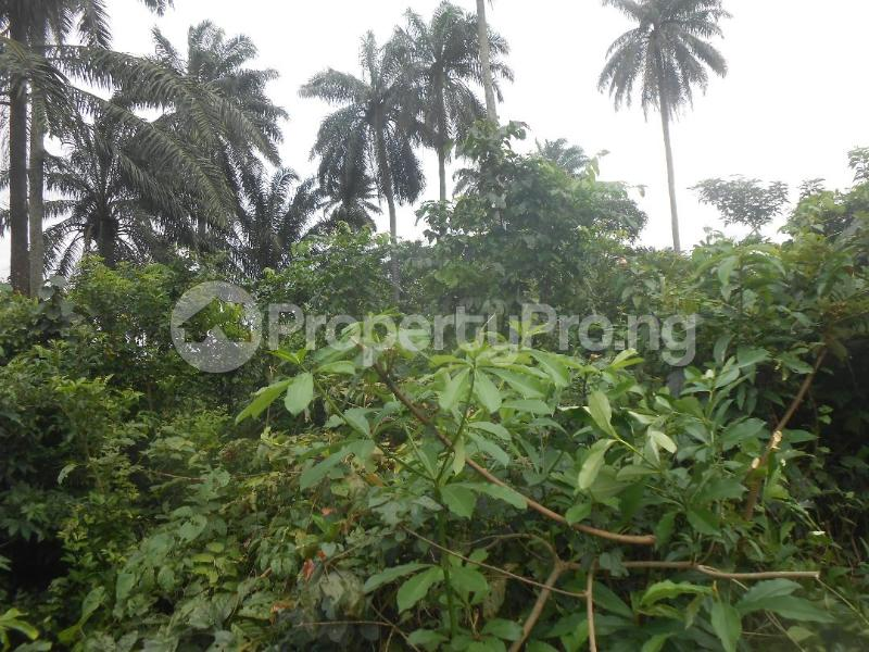 Residential Land Land for sale UYO Uyo Akwa Ibom - 2