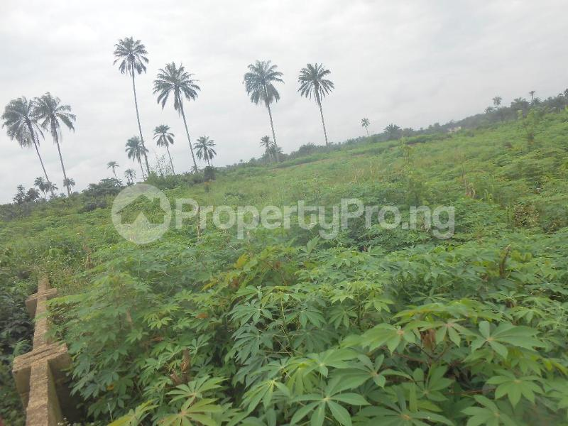 Residential Land Land for sale UYO Uyo Akwa Ibom - 3