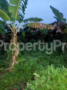 Land for sale UYO Uyo Akwa Ibom - 4