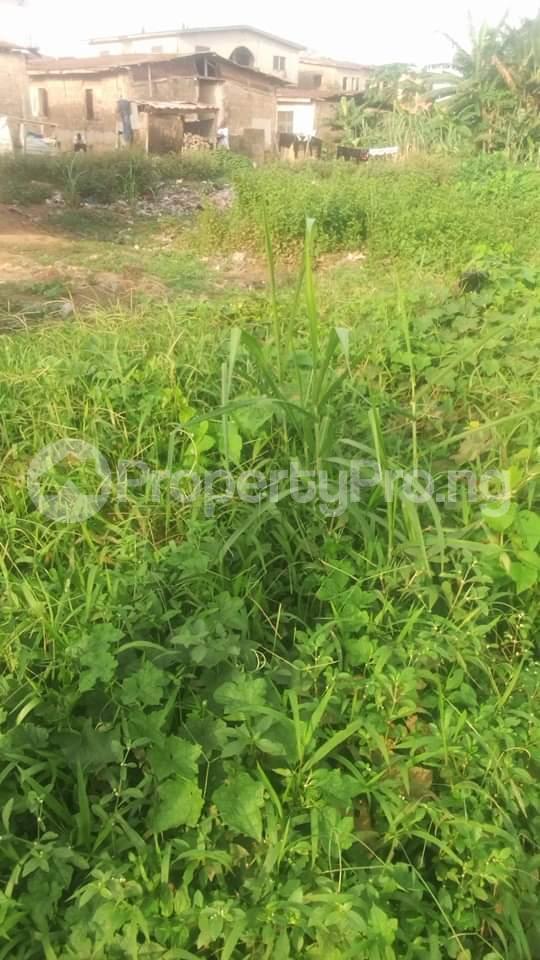 4 bedroom Residential Land Land for sale Off oladire str Ifako-ogba Ogba Lagos - 0