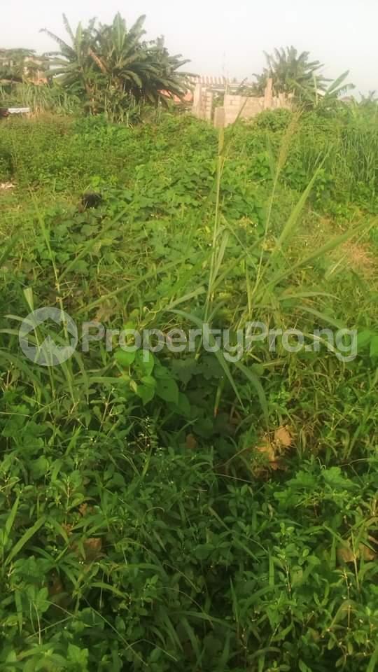 4 bedroom Residential Land Land for sale Off oladire str Ifako-ogba Ogba Lagos - 1