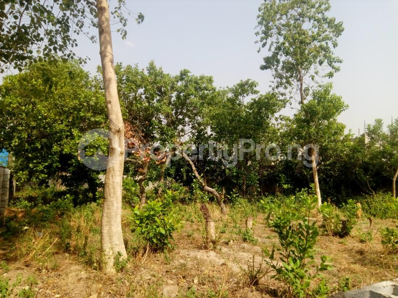 Mixed   Use Land Land for sale Dakibiyu road, Abuja Dakibiyu Abuja - 2