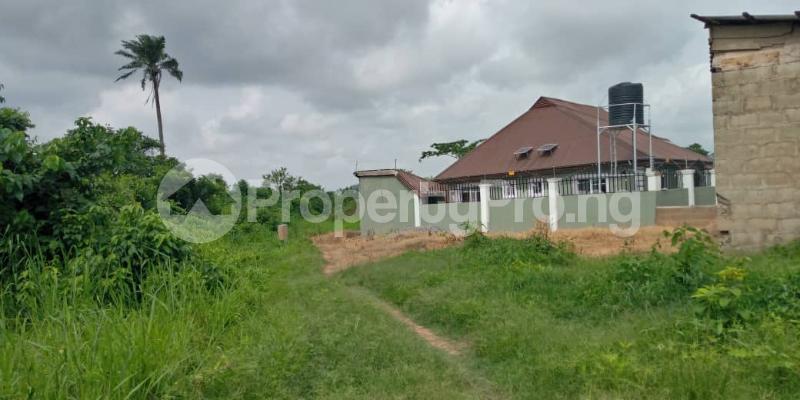 Land for sale  at palm gardens bagadaje area apapa moniya ibadan Akinyele Oyo - 0
