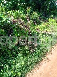Mixed   Use Land Land for sale Ayegun Akala Express Ibadan Oyo - 0