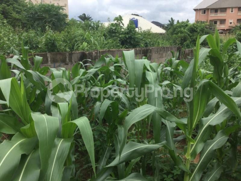 Mixed   Use Land Land for sale precious  at One Day bus stop Enugu South  LGA Enugu Enugu - 1
