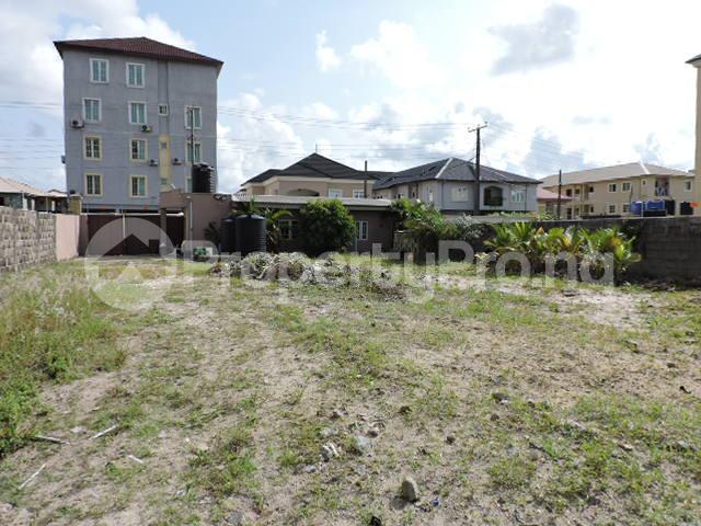 1 bedroom mini flat  Mixed   Use Land Land for rent Off Freedom Way Lekki Phase 1 Lekki Lagos - 1