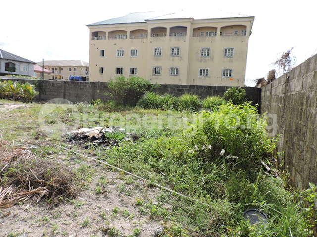 1 bedroom mini flat  Mixed   Use Land Land for rent Off Freedom Way Lekki Phase 1 Lekki Lagos - 2